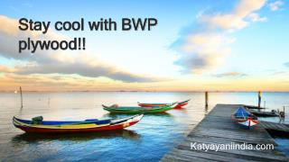 Be stay cool with BWP plywood!!