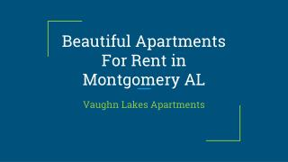 Beautiful Apartments For Rent in Montgomery AL