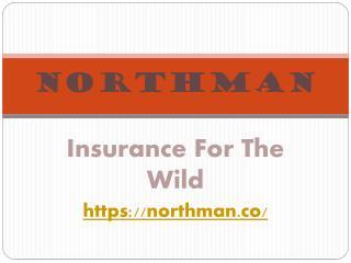 Northman