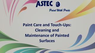 Paint Care and Touch-Ups: Cleaning and Maintenance of Painted Surfaces