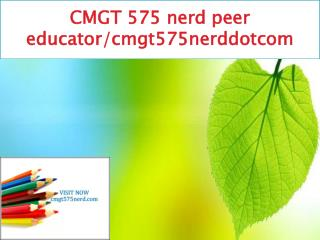 CMGT 575 nerd peer educator/cmgt575nerddotcom