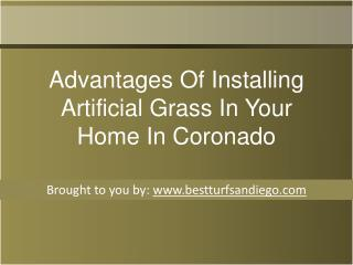 Advantages Of Installing Artificial Grass In Your Home In Coronado