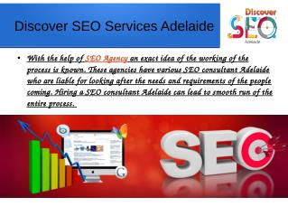 SEO Penalty Assessment Services Adelaide