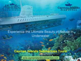 Explore stunning sea life with Underwater submarine tours.