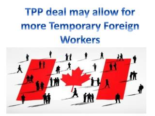 TPP deal may allow for more Temporary Foreign Workers