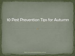10 Pest Prevention Tips for Autumn