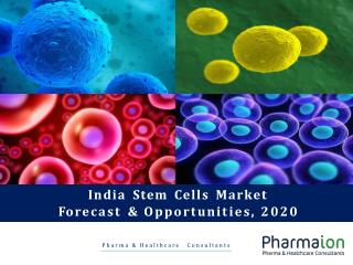 India Stem Cells Market Research Report