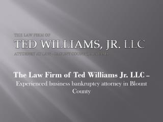 The Law Firm of Ted Williams Jr. LLC – Experienced business bankruptcy attorney in Blount County