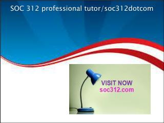 SOC 312 professional tutor/soc312dotcom