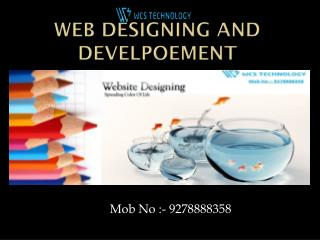 Web designing and development@9278888358