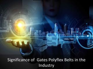 Importance of Gates Polyflex Belts In UAE