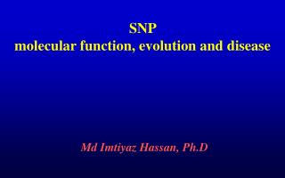 SNP  molecular function, evolution and disease