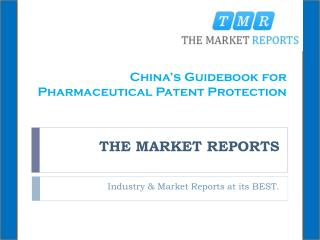 China's Guidebook for Pharmaceutical Patent Protection