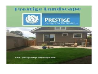 Portland Landscape - WWW.prestige-landscape.com