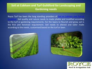 Soil at Cobham and Turf Guildford for Landscaping and Gardening needs