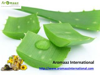 Buy Online Natural Essential Oil @ Aromaazinternational.com