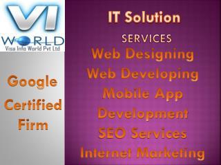 Website Development(9899756694) Company in Noida India -visainfoworld.com