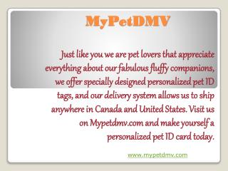 Personalized pet IDs for every pet, they make me feel safe.