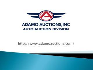 Adamo Auctions