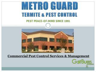 Commercial Pest Control Services & Management