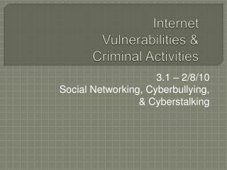 Internet Vulnerabilities  Criminal Activities