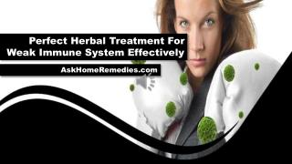 Perfect Herbal Treatment For Weak Immune System Effectively