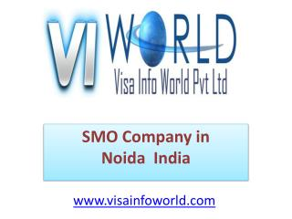 Website designing company(9899756694) in Noida India-visainfoworld.com