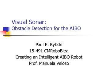 Visual Sonar:  Obstacle Detection for the AIBO