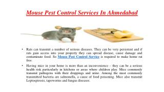 Mouse pest control services in ahmedabad