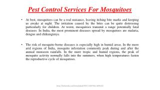 Pest Control Services For Mosquitoes