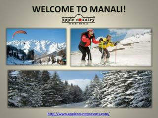 Apple Country - Queen of Manali