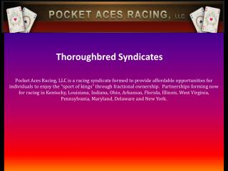 Thoroughbred Syndicates