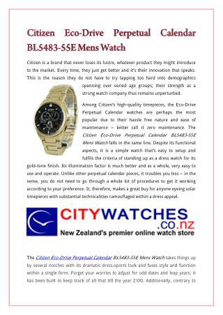 Citizen Eco-Drive Perpetual Calendar BL5483-55E Mens Watch