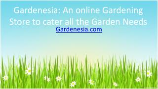 Gardenesia An online Gardening Store to cater all the Garden Needs