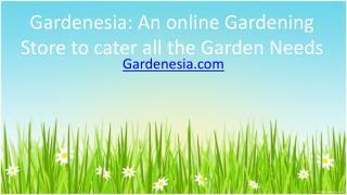 Gardenesia An online Gardening Store to cater all the Garden Needs