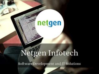 Netgen Infotech Software Development And IT Solutions