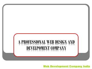A PROFESSIONAL WEB DESIGN AND DEVELPOMENT COMPANY