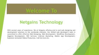 Website Development & Designing Company Netgains Technology India