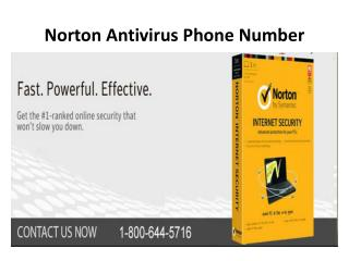 Norton Antivirus Phone Number 1-800-644-5716