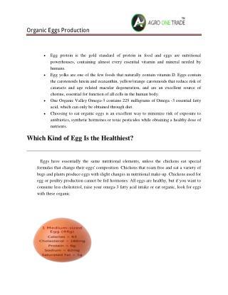 Agro One Eggs