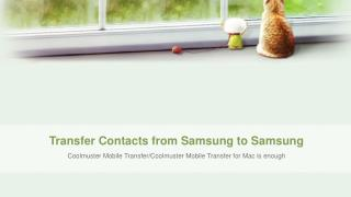 Transfer Contacts between Two Android Phones