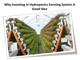 Why Investing In Hydroponics Farming System A Good Idea