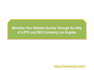 Monetize Your Website Quickly Through the Help of a PPC and SEO Company Los Angeles