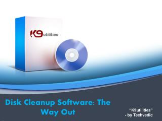 Disk Cleanup Software: The Way Out