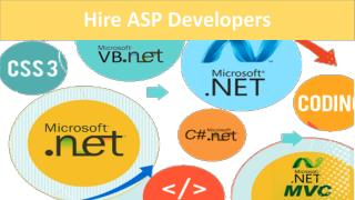 Hire ASP Developers
