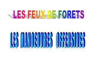 LES FEUX DE FORETS