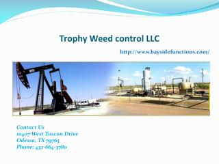 Chemical weed Control Texas