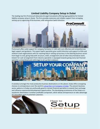 Limited Liability Company Setup in Dubai