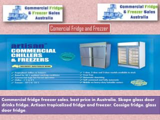 Commercial Fridge and frizzer