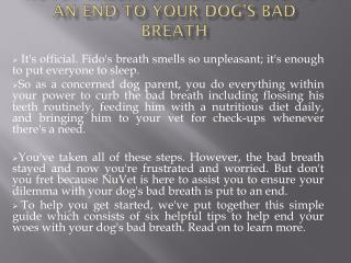 NuVet Labs: 6 Simple Ways to Put an End to Your Dog's Bad Breath